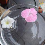 お花の浮き輪 夏のインテリアに
