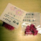 桜湯のおすすめ(お風呂にもどうぞ)