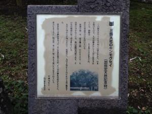 2015041208