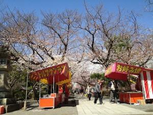 misimataisha201303212