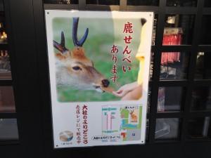 misimataisha201503121